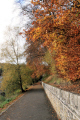 autumn walkway countryside rural environmental uk winter leaves lanarkshire scotland scottish scotch scots escocia schottland great britain united kingdom british grande-bretagne grande bretagne grandebretagne großbritannien gran bretagna bretaña