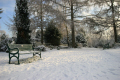 winter time. uk parks gardens environmental bench snow glasgow central scotland scottish scotch scots escocia schottland united kingdom british