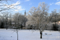 winter kelvingrove park. seasons seasonal environmental snow university glasgow central scotland scottish scotch scots escocia schottland united kingdom british