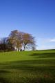 landscape viw sheffield south yorkshire countryside rural environmental trees blue sky field england english angleterre inghilterra inglaterra united kingdom british