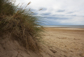 clump grass deserted beach norfolk british seaside coastal resorts leisure sand sea coast england english angleterre inghilterra inglaterra united kingdom