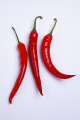red chiili peppers food nourishment nutrients abstracts ingredients cooking culinary fresh united kingdom british