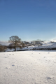 winter landscape strines sheffield south yorkshire countryside rural environmental snow scene trees england english angleterre inghilterra inglaterra united kingdom british