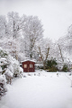 garden covered snow sheffield south yorkshire winter seasons seasonal environmental tree hut shed deep snowing weather season england english angleterre inghilterra inglaterra united kingdom british