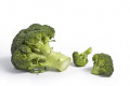 piece broccoli food nourishment nutrients abstracts vegetable cooking green fresh ingredients united kingdom british