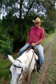 cuban man horseback holguin cuba horses equus equine animals animalia natural history nature cowboy farmer horse riding caribbean