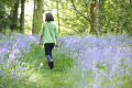 young girl walking away camera wood bluebells season springtime footpath flowers plants plantae natural history nature children childhood forest spring high wycombe buckinghamshire bucks england english angleterre inghilterra inglaterra united kingdom british