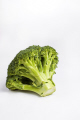 single piece broccoli food nourishment nutrients abstracts vegetable green fresh white background united kingdom british
