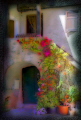 corsica floral doorway town saint florent proprietory artistic treatment photoshop filter photography imaging arts haute corse port flowers colourful digital enhanced surrealistic france la francia frankreich french