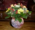 flowers vase coffee table plants plantae natural history nature floral bouquet posy arrangement pretty colourful correze limousin france la francia frankreich french