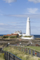 lighthouse whitley bay northumbria uk coastline coastal environmental coast northumberland northumbrian england english angleterre inghilterra inglaterra united kingdom british