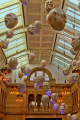 hanging heads expressions kinds display historical kelvingrove art gallery building uk galleries british architecture architectural buildings design glasgow central scotland scottish scotch scots escocia schottland united kingdom