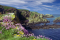 aberdeen coastline near bullers buchan cruden bay peterhead. uk coastal environmental aberdeenshire sea cave thrift gulls birds erosion cirrus scotland scottish scotch scots escocia schottland united kingdom british
