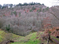 typical landscape monedieres region southern limousin french landscapes european corrèze correze forest france monédières winter valley la francia frankreich
