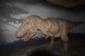 tyranosaurus rex animatronic natural history museum london museums galleries buildings architecture capital england english united kingdom british
