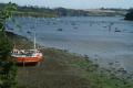 helford passage low water uk coastline coastal environmental estuary tidal tide lizard cornwall cornish england english angleterre inghilterra inglaterra united kingdom british
