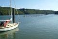 yacht moored oyster farm river fal boats marine falmouth cornwall cornish england english angleterre inghilterra inglaterra united kingdom british