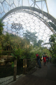 eden project rainforest biome tourist attractions england english botanical garden attraction architectural geodesic dome cornish cornwall angleterre inghilterra inglaterra united kingdom british