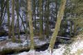 river montaine near village gimel-les-cascades gimel les cascades gimellescascades southern limousin french landscapes european corr ze correze forest france pays-de-tulle pays de tulle paysdetulle winter valley wintery snow la francia frankreich