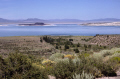 mono lake basin just inside yosemite national park wilderness california east lee vining mountains alpine nationa californian