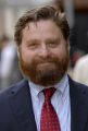 zach galifianakis american stand-up stand up standup comedian actor actors usa acting thespian male celebrities celebrity fame famous star white caucasian portraits