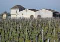 vineyards chateau la garelle saint milion region france french ch teaus european emilion aquitaine gironde viticulture viniculture vineyard grapevine winemaking bordeaux claret grapes vignoble cabernet sauvignon franc merlot francia frankreich
