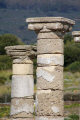 spain remains basilica roman city baelo claudia near bolonia archeology archeological science spanish espagna espa andalusia andalucia cadiz costa la luz tarifa atlantic ocean spanien espagne spagna