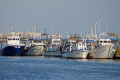 malaga province spain fishing fleet caleta velez boats marine spanish espagne espa andalusia andalucia estepona laga costa del sol mediterranean spanien la spagna