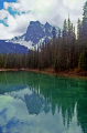 emerald lake yoho national park canada wilderness natural history nature british columbia kicking horse river louise burgess shale banff transparent rock flour turquoise canadian