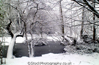 frozen pond trees winter seasons seasonal environmental uk weather kingston london cockney england english angleterre inghilterra inglaterra united kingdom british