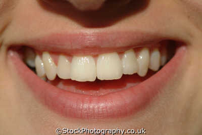 smile women woman female females feminine womanlike womanly womanish effeminate ladylike people persons happy teeth dental hygene white caucasian portraits