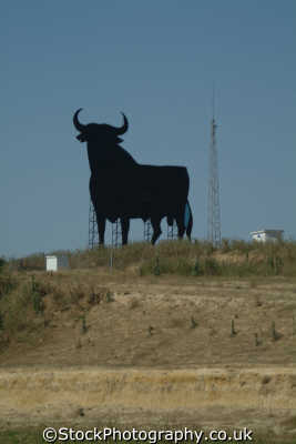 bull billboard galicia spanish espana european travel spain spanien españa espagne la spagna europe