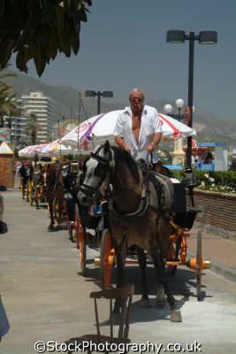 horse trap rides seafront fuengirola costa del sol mediterranean andalucia spanish espana european travel spain spanien españa espagne la spagna europe