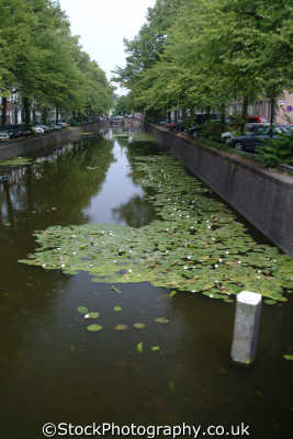 canal hague dutch netherlands european travel den haag holland la hollande holanda olanda europe