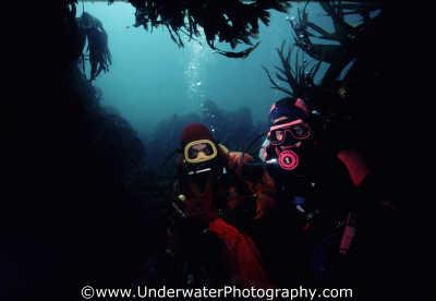 divers kelp weed attached marine life underwater diving laminaria hyperborea benny sutton scottish borders scotland scotch scots escocia schottland united kingdom british