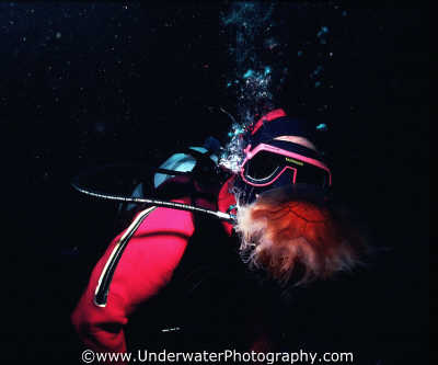 drysuit diver lions mane jellyfish floating planktonic marine life underwater diving scottish borders scotland scotch scots escocia schottland united kingdom british