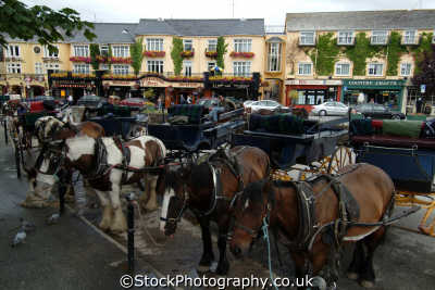 pony rides killarney transport transportation uk kerry ciarraí republic ireland eire irish irland irlanda europe european