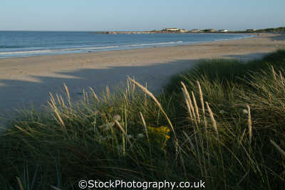 beach rosslare british beaches coastal coastline shoreline uk environmental republic ireland eire irish irland irlanda europe european