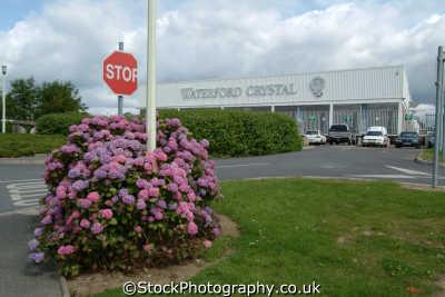 waterford crystal factory brands branding uk business commerce glass port láirge republic ireland eire irish irland irlanda europe european