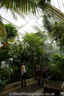 kew gardens palm house interior botanical botany london parks capital england english uk horticulture horticultural humidity tropical richmond cockney angleterre inghilterra inglaterra united kingdom british