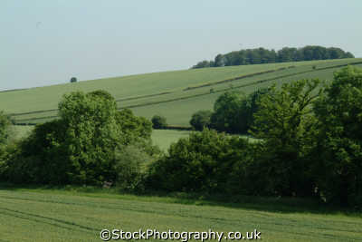 chiltern hills mountains countryside rural environmental uk chilterns buckinghamshire bucks england english angleterre inghilterra inglaterra united kingdom british