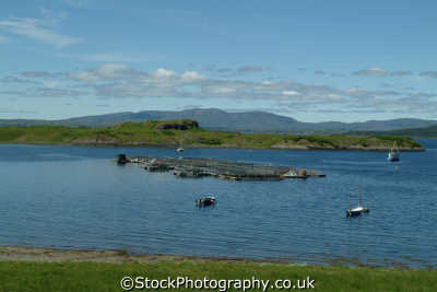 scottish fish farm agriculture farming natural history nature misc. aquaculture spawning hatchery salmon dunoon argyll bute argyllshire scotland scotch scots escocia schottland great britain united kingdom british