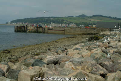 largs harbour uk coastline coastal environmental ayrshire scotland scottish scotch scots escocia schottland great britain united kingdom british