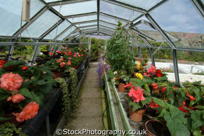 castle mey caithness royal greenhouse uk parks gardens environmental hothouse glasshouse arboretum highlands islands scotland scottish scotch scots escocia schottland great britain united kingdom british