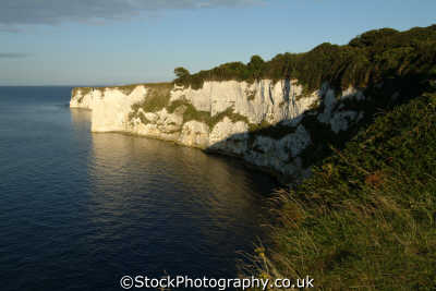 studland bay foreland uk coastline coastal environmental dorset england english great britain united kingdom british