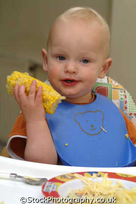 toddler pelican bib eating sweetcorn people mastication nutrition ingestion digestion meals food human activities persons vegetables cornwall cornish england english great britain united kingdom british