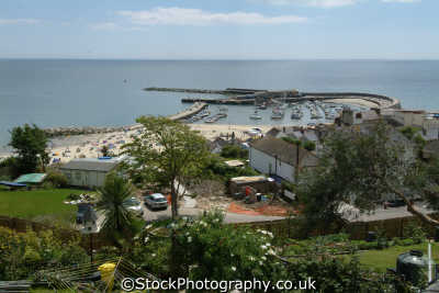 lyme regis dorset. harbour bay harbor uk coastline coastal environmental dorset england english great britain united kingdom british
