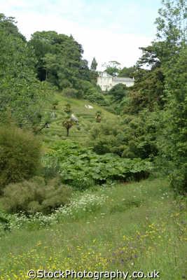 glendurgan garden valley uk parks gardens environmental cornwall cornish england english great britain united kingdom british