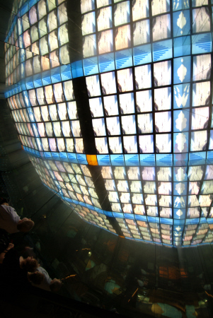 huge spherical screen display natural history museum london museums galleries buildings architecture capital england english united kingdom british