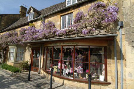 wisteria high street broadway worcestershire midlands towns england english gloucestershire angleterre inghilterra inglaterra united kingdom british